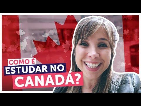 TUDO Sobre Estudar No Canadá + TOUR Pelas Escolas | Intercâmbio Em Toronto