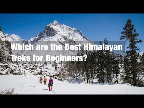 Which are the Best Himalayan Treks for Beginners?