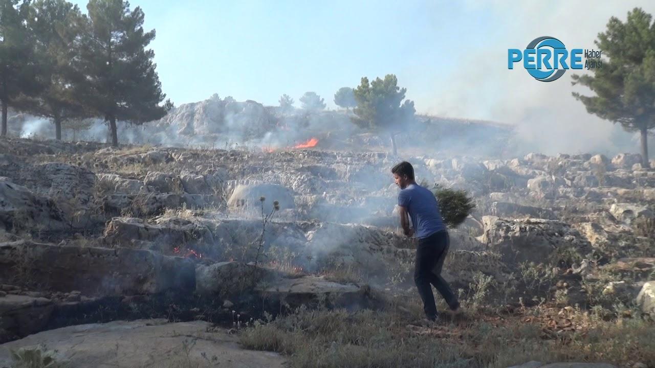 Ormanlık Alan da Yangına Vatandaş Müdahale Etti