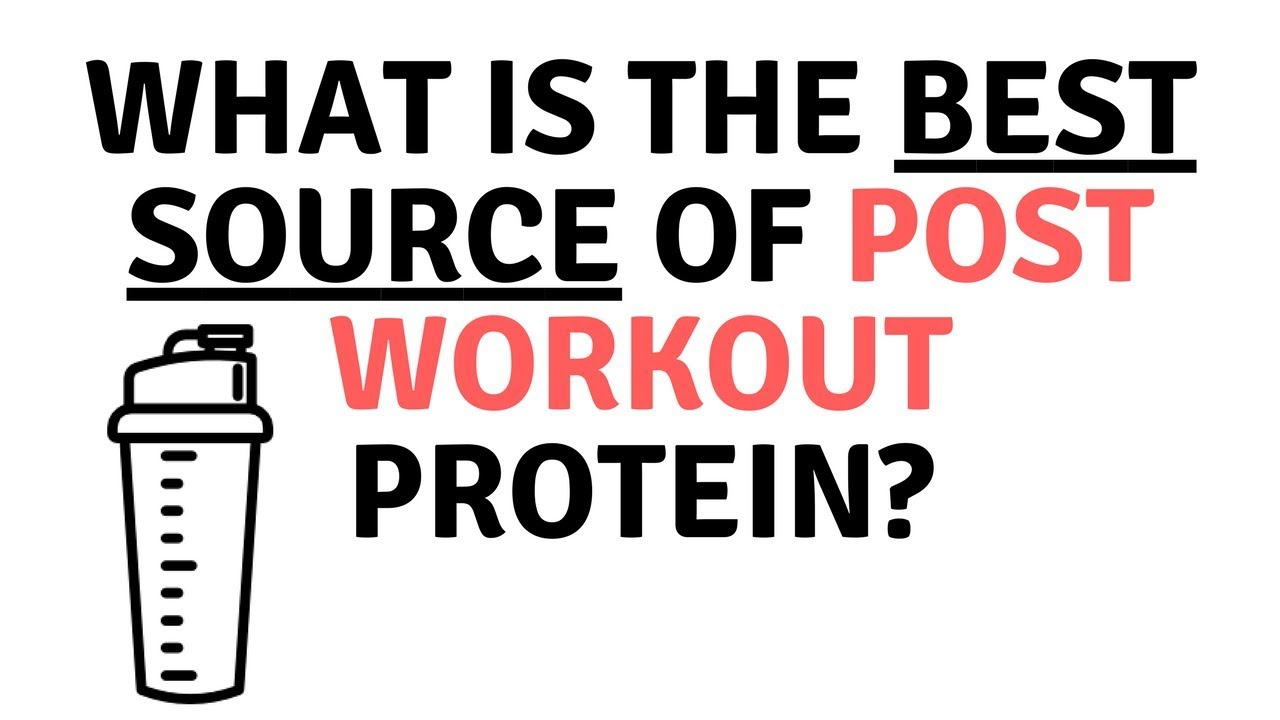 The BEST Post Workout Protein? Does It Even Matter? {The Daily ...