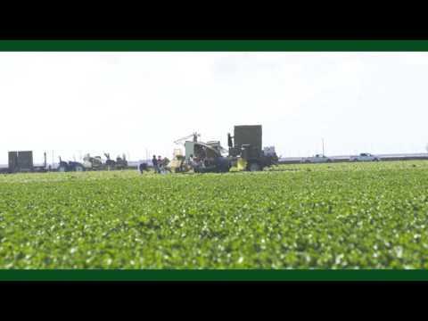 Agricultural Business Online Program