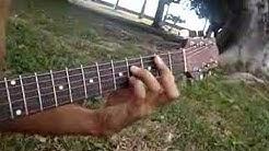 Acoustic guitar instrumental Ori raa i Tahiti