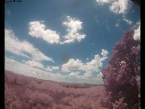 Cloud Camera 2016-08-14: Pasco Energy and Marine Center