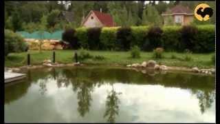 видео Сооружение пруда на даче, история вторая (часть 2)