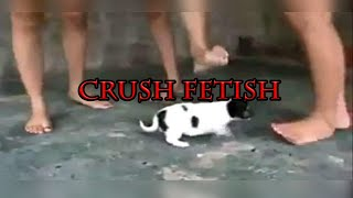 Com crush fetish
