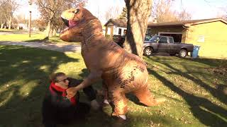 T Rex Fight against Two Grandmas - Nerf Gun Battle for the Ages!