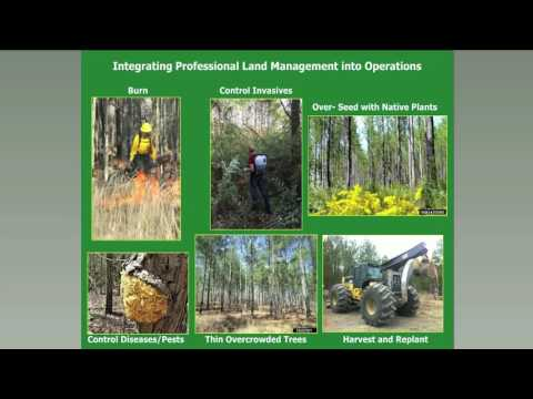 SFE Webinar: Fire Adapted Cities - Prescribed Fire Use in Urban and Community Forest Management
