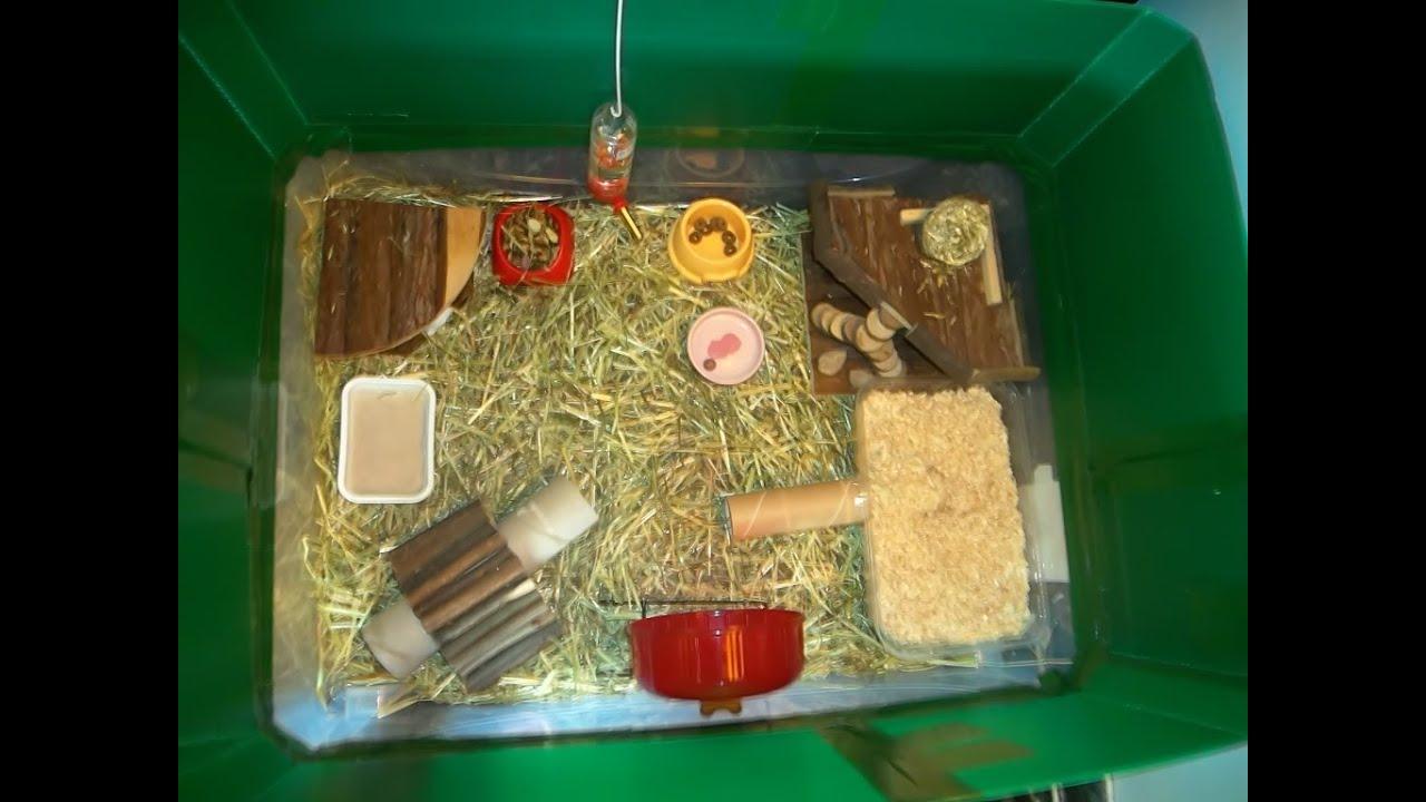 Favorito Criceti - Luna Park - Il parco giochi di Fosca! - YouTube UG61