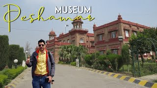 Peshawar Museum Tour & Meeting with Hammad Safi
