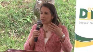 PURIRES Y PALO VERDE  DE EL GUARCO DE CARTAGO