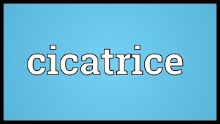 Cicatrice Meaning