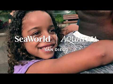 SeaWorld San Diego - Video