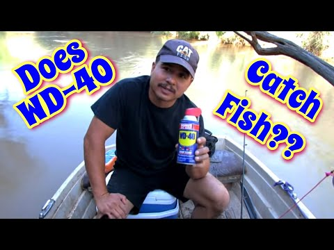 Thumbnail: Fishing With WD 40