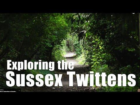 Walks in Sussex: The Sussex Twitttens