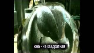 Чернобыль (отрывок)