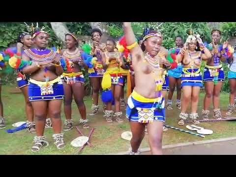 Zulu reed dance Virgin Pround To Be An African