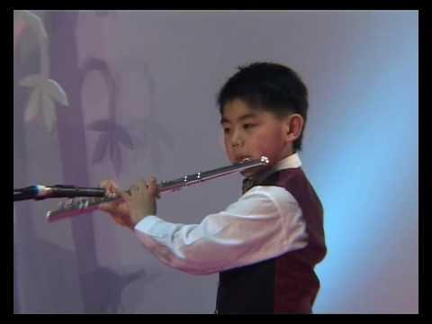 Menuetto by Franz Schubert (children flute solo)