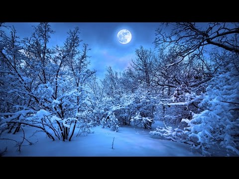 THE ENCHANTED SNOW FOREST by Reginald Murray (radio drama) A TALE OF FANTASY & ADVENTURE FROM CTFDN