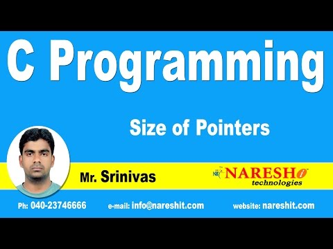 Size of Pointers | C Language Tutorial