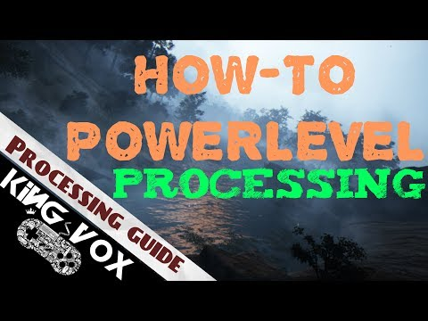Black Desert Online - Power-Leveling Processing