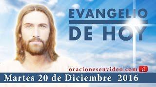 Evangelio de hoy Martes 20 de Diciembre 2016 No temas