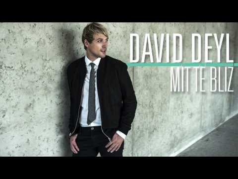 David Deyl - Mít tě blíž (Audio)
