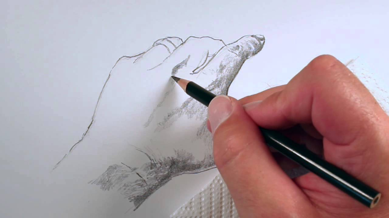 How To Draw A Realistic Hand Youtube