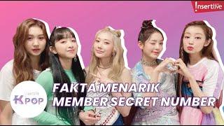 Download Wow Fakta Secret Number, Ada Yang Mulai dari Girl Group hingga Bidadari Khayangan