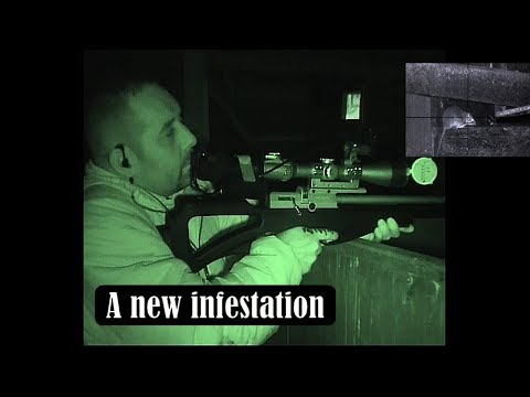 A new infestation (in HD).