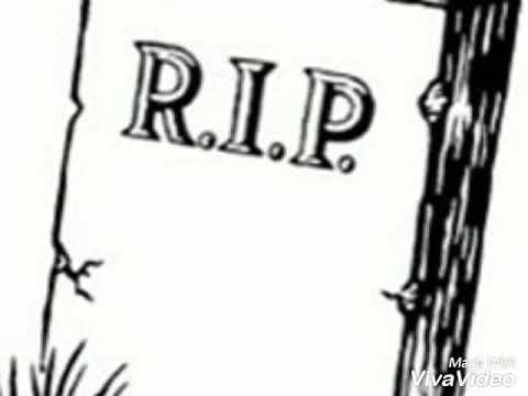 Hommage à Papa Mackjoss le Baobab reprise du titre le Boucher- Belvy Reus