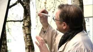 Alexander Stoddart - Year of Creative Scotland
