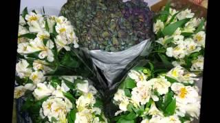 видео доставка цветов Армавир