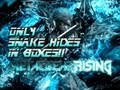 ONLY SNAKE HIDES IN BOXES! - Metal Gear Rising Revengeance Ep.5