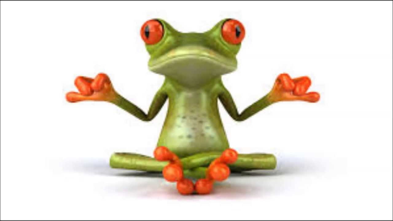 I'm a Frog (Ribit) - YouTube