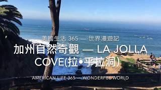美國生活 365 — 加州自然奇觀 La Jolla Cove (拉•乎拉洞)