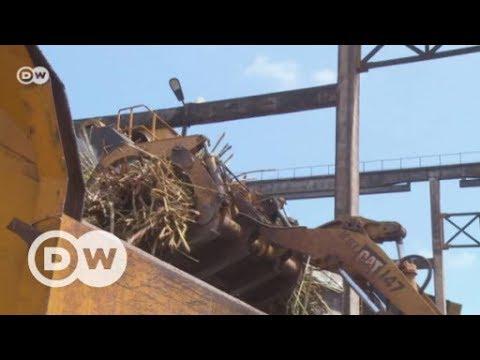 Powering Uganda with sugar | DW English
