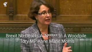 Tory MP Anne Marie Morris Recorded Saying Brexit No Deal Is A 'N***** In A Woodpile'