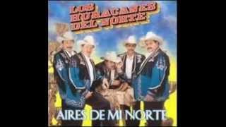 Los Huracanes Del Norte Puro guanajuato
