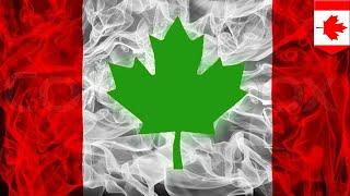 Canada green lights buddha for fun - TomoNews