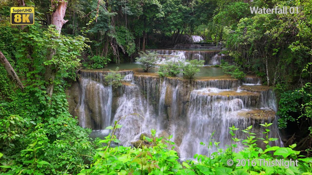8k stock video waterfall nature real time time lapse - 8k animal wallpaper ...