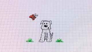 Простые рисунки #153 Щенок и бабочка =)