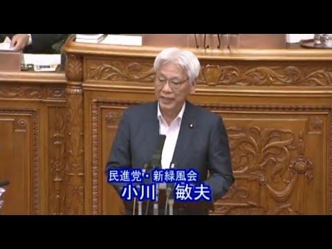 参院本会議 小川敏夫議員質疑 2017年6月15日