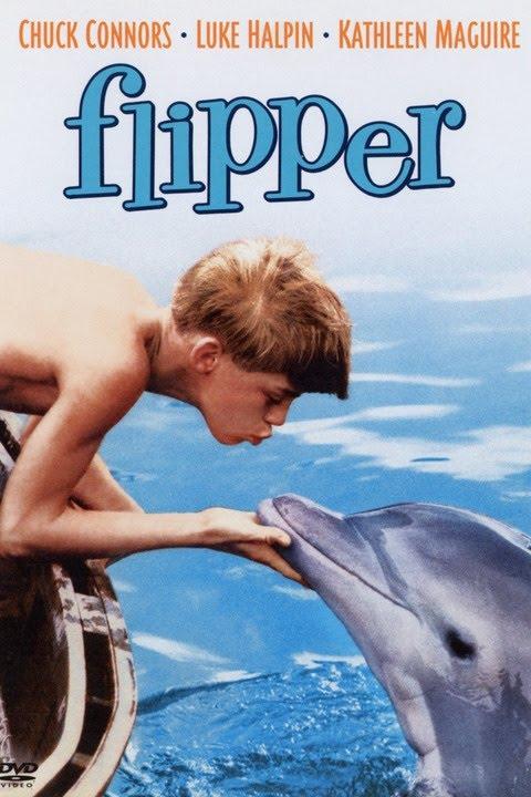 Flipper Musik