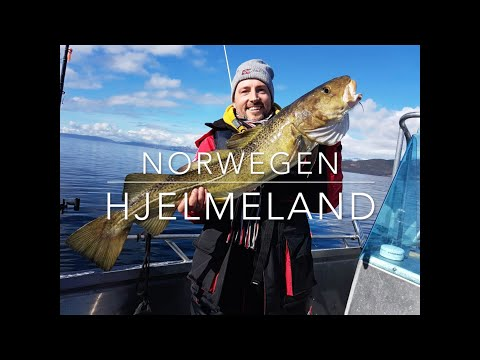 ANGELN IN SÜDNORWEGEN #1 HJELMELAND 2018 NORWEGEN OMBO / FISHING IN SOUTHNORWAY NORWAY URLAUB