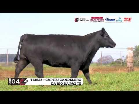 LOTE 04   TE11523 CAPITU CANDELERO DA RIO DA PAZ TE
