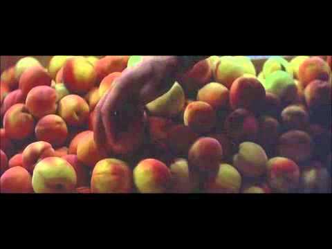 Klute, Fruitmarket
