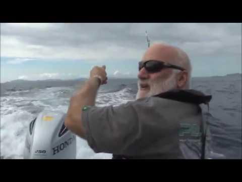 Bay Of Islands Game Fishing