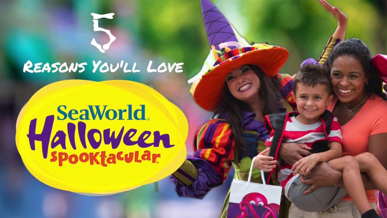 Halloween Spooktacular Seaworld.Halloween Spooktacular At Seaworld San Antonio