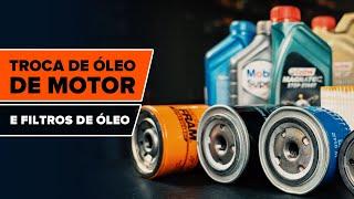 Guias em vídeo sobre a manutenção de veículos - Realize a sua própria inspeção