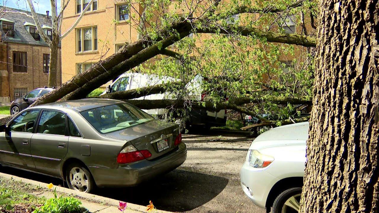 Storm Damage Captured On North Side